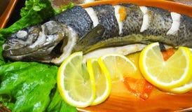 Ψάρια πεστροφών Sevan Στοκ Εικόνες