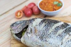 ψάρια που βράζουν στον ατ&mu Στοκ εικόνα με δικαίωμα ελεύθερης χρήσης