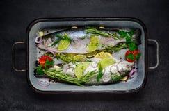 Ψάρια που καρυκεύονται με τα καρυκεύματα και τα χορτάρια Στοκ Φωτογραφία