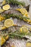 Ψάρια που προετοιμάζονται ακατέργαστα Στοκ φωτογραφία με δικαίωμα ελεύθερης χρήσης