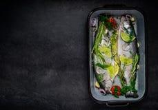 Ψάρια που προετοιμάζονται για το διάστημα μαγειρέματος και αντιγράφων Στοκ Φωτογραφίες