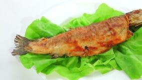 ψάρια που τηγανίζονται απόθεμα βίντεο