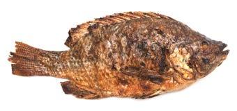ψάρια που ψήνονται στη σχάρ&alp στοκ φωτογραφία με δικαίωμα ελεύθερης χρήσης