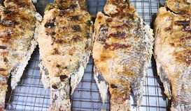 ψάρια που ψήνονται στη σχάρ&alp στοκ εικόνα με δικαίωμα ελεύθερης χρήσης