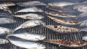ψάρια που ψήνονται στη σχάρ&alp φιλμ μικρού μήκους