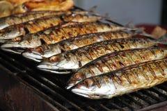 ψάρια που ψήνονται στη σχάρ&alp στοκ εικόνα