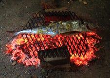 ψάρια που ψήνονται στη σχάρ&alp Στοκ Εικόνες