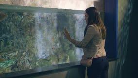 Ψάρια προσοχής γυναικών που κολυμπούν στο oceanarium Άγρια ψάρια και υποβρύχιος κόσμος απόθεμα βίντεο