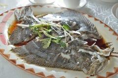 Ψάρια ρόμβων ατμού Στοκ Εικόνες
