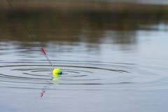 Ψάρια σε ένα αγκίστρι Στοκ φωτογραφία με δικαίωμα ελεύθερης χρήσης