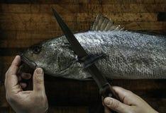 Ψάρια σε ετοιμότητα τον ξύλινοι πίνακα και που καθαρίζουν τα ψάρια Στοκ Εικόνα