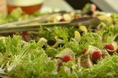 Ψάρια σε μια όμορφη σάλτσα ντοματών πιάτων στοκ φωτογραφίες με δικαίωμα ελεύθερης χρήσης