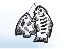 Ψάρια στα αγκίστρια Στοκ φωτογραφίες με δικαίωμα ελεύθερης χρήσης