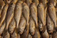 Ψάρια στην αγορά θαλασσινών Στοκ Φωτογραφία