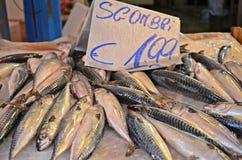 Ψάρια στην αγορά στο Παλέρμο Στοκ Φωτογραφία