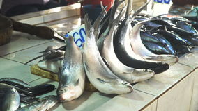 Ψάρια στην ασιατική αγορά απόθεμα βίντεο
