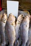 Ψάρια στις αγορές του δυτικού Χονγκ Κονγκ με την κενή τιμή στοκ φωτογραφίες με δικαίωμα ελεύθερης χρήσης
