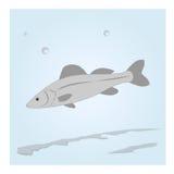 Ψάρια στο νερό ελεύθερη απεικόνιση δικαιώματος