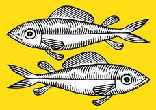 ψάρια σχεδίων Στοκ Εικόνες
