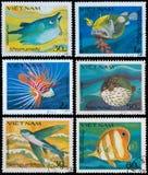 Ψάρια τεράτων Στοκ φωτογραφία με δικαίωμα ελεύθερης χρήσης