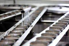 Ψάρια τόνου στην επεξεργασία δοχείων στο εργοστάσιο Στοκ Εικόνα