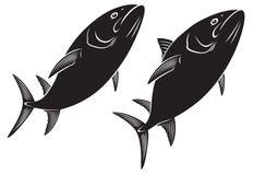 Ψάρια τόνου Στοκ Εικόνες