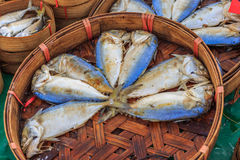 ψάρια φρέσκα Στοκ Εικόνα