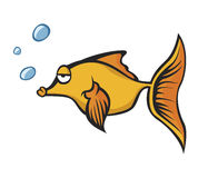 ψάρια χρυσά Στοκ φωτογραφίες με δικαίωμα ελεύθερης χρήσης