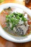 Ψάρια Acanthopagrus στοκ εικόνες
