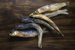 Ψάρια Bokkoms Στοκ εικόνες με δικαίωμα ελεύθερης χρήσης