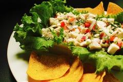 Ψάρια Ceviche στοκ εικόνες