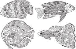 Ψάρια Doodle zentangle Χρωματίζοντας σελίδα τέχνης της Zen για τους ενηλίκους Στοκ Φωτογραφία