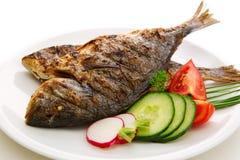 Ψάρια Dorada Στοκ εικόνες με δικαίωμα ελεύθερης χρήσης