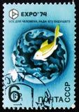 Ψάρια, EXPO 74, circa 1974 Στοκ Εικόνες