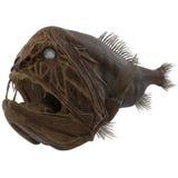 Ψάρια Fangtooth στο άσπρο υπόβαθρο απεικόνιση αποθεμάτων