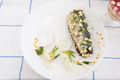 Ψάρια Gefilte Στοκ εικόνες με δικαίωμα ελεύθερης χρήσης