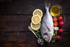 Ψάρια Gilthead και κενό διάστημα Στοκ Εικόνα