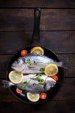 Ψάρια Gilthead στο τηγάνι Στοκ Εικόνες