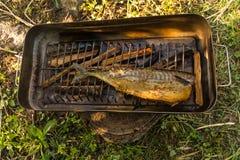 Ψάρια Gril Στοκ Εικόνα