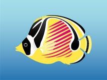ψάρια litlle Στοκ Εικόνες