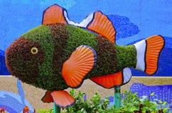 Ψάρια topiary Στοκ εικόνα με δικαίωμα ελεύθερης χρήσης
