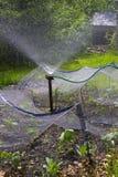 ψέκασμα μηχανών κήπων Στοκ Φωτογραφίες