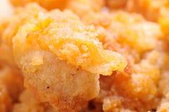 ψήγμα κοτόπουλου στοκ εικόνες με δικαίωμα ελεύθερης χρήσης