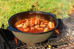 Ψήνοντας κρέας για το μαγείρεμα pilaf στο φυτικό έλαιο στο πικ-νίκ στοκ εικόνα με δικαίωμα ελεύθερης χρήσης
