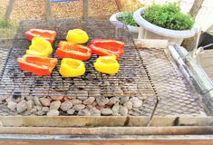 Ψήνοντας πιπέρια κουδουνιών στοκ φωτογραφία με δικαίωμα ελεύθερης χρήσης