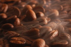 ψήσιμο καφέ Στοκ Εικόνα