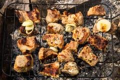 Ψήσιμο κρέατος χοιρινού κρέατος στη σχάρα Κρέας στους άνθρακες, σχάρα στοκ εικόνα