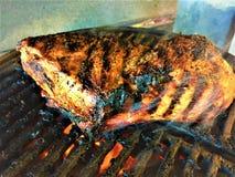 Ψήσιμο στη σχάρα ενός ψητού βόειου κρέατος τρι-ακρών στοκ φωτογραφία με δικαίωμα ελεύθερης χρήσης
