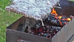 Ψήσιμο στη σχάρα του μαριναρισμένου κρέατος χοιρινού κρέατος με το κρεμμύδι στη σχάρα σχαρών στην πυρκαγιά απόθεμα βίντεο