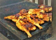 Ψήσιμο στη σχάρα των οπίσθιων κοτόπουλου στοκ εικόνες με δικαίωμα ελεύθερης χρήσης